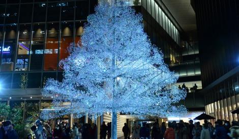 サムネイル 箱根ガラスの森美術館とコラボレーションした、東京ガーデンテラス紀尾井町のクリスタルツリー (C)oricon ME inc.