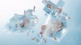 氷の塊に閉じ込められたPerfumeがヒートテックの熱によって覚醒する