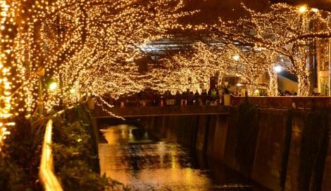 サムネイル 中目黒の目黒川沿いで2年ぶりのXmasイルミイベントがスタート (C)oricon ME inc.