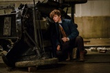 『ファンタスティック・ビーストと魔法使いの旅』の特別映像が公開