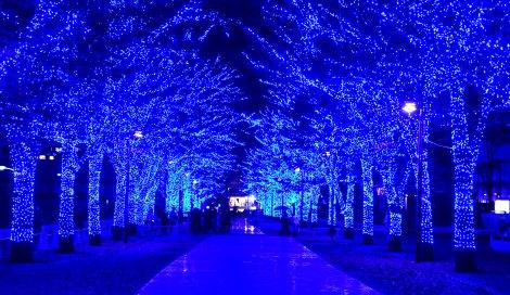 サムネイル 『青の洞窟SHIBUYA』の様子