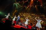 星野源 新春Live 2days『YELLOW PACIFIC』より Photo by 西槇太一