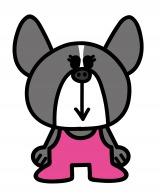 ショートアニメ『ぶっぷな毎日』、関西テレビで放送決定。フレンチブルドッグのマーガレット。デビットの双子の妹。こちらも、元気で明るい娘(C)「ぶっぷな毎日」製作委員会