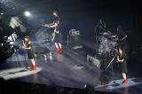 乃木團=乃木坂46『5th YEAR BIRTHDAY LIVE』2日目より