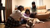 三姉妹との涙の別れまでの1ヶ月をカメラが追った(C)テレビ東京