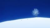 日本テレビ系『金曜ロードSHOW!』(後9:00)では24日、細田守監督作品『おおかみこどもの雨と雪』を放送(C)2012「おおかみこどもの雨と雪」製作委員会
