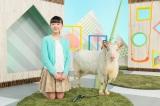 芦田愛菜が出演するEテレの番組『子ども 安全リアルストーリー』3月30日・31日の2日にわたって、新小学1年生をはじめ低学年向けに、交通事故や学校内のけがを防ぐために知っておきたいことを紹介する(C)NHK