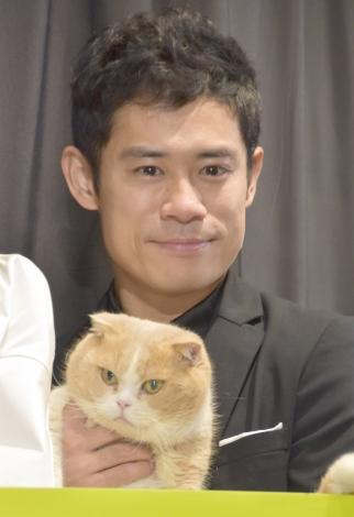 映画『ねこあつめの家』初日舞台あいさつに出席した伊藤淳史 (C)ORICON NewS inc.