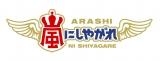 日本テレビ系バラエティ番組『嵐にしやがれ』(毎週土曜 後9:00)に明石家さんまが出演 (C)日本テレビ