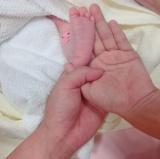 第1子誕生を報告したジャンポケ太田博久(写真はインスタグラムより)