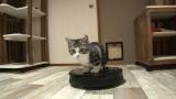 お掃除猫(C)テレビ東京