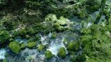 サントリー天然水新テレビCM『水の山行ってきた奥大山』篇より