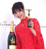 『MOET PARTY DAY 2017』のオープニングセレモニーに参加した佐々木希 (C)ORICON NewS inc.