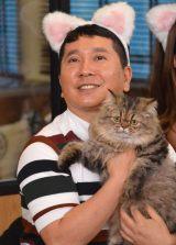 フジテレビ系『爆笑問題の超!ネコ学 猫、知ってるつもり?』の会見に出席した爆笑問題の田中裕二 (C)ORICON NewS inc.