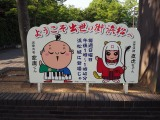 浜松城で出世大名家康くんと出世法師直虎ちゃんと出会えます (C)ORICON NewS inc.