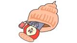 日本テレビ系朝の情報番組『ZIP!』総合司会の川島海荷が『朝だよ!貝社員』に登場 (C)NTV/TOHO CINEMAS LTD./DLE