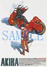 代表作『AKIRA』のポスター