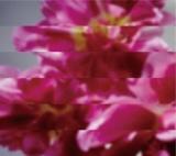 MONDO GROSSO『何度でも新しく生まれる』(6月7日発売)
