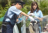 ペンギンに餌やりをする(左から)横山だいすけ、石川恋 (C)ORICON NewS inc.