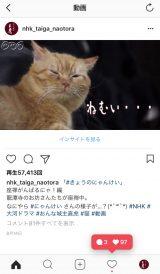 猫のにゃんけいさんも人気(画像提供:NHK)