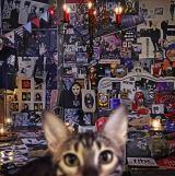 メジャーデビュー30周年記念ベストアルバム『CATALOGUE 1987-2016』(9月20日発売)
