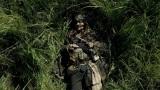 強盗を働くため、草木に身を隠すジャック・スパロウ