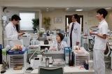 組織のことなど我関せずのゆとり世代医師たちにも注目を(左から)永山絢斗、米倉涼子、中林大樹、上杉柊平(C)テレビ朝日