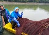 池が広大なため、地引網を使って生物を一網打尽にする作戦(C)テレビ東京