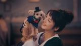 佐々木希がハンドメイドマーケット「minne」の新CMで愛犬と共演