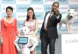 白戸家の(左から)樋口可南子、上戸彩、ダンテ・カーヴァー、お父さんと犬 (C)ORICON NewS inc.