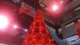 長谷川喜美さんがデザインしたクリスマスイルミネーション(C)カンテレ