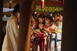 乃木坂46成人式の模様