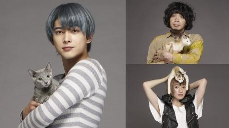映画『猫は抱くもの』に出演する吉沢亮(左)、峯田和伸(右上)、コムアイ (C)2018 『猫は抱くもの』製作委員会