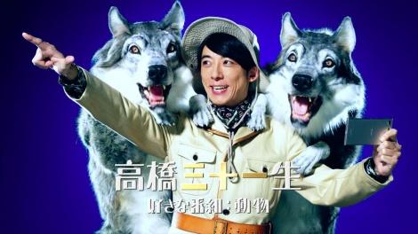 dTVチャンネル新CM「ゴーイングマイウェイ賛歌」より。高橋三十一生(動物番組好き)