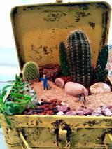 """柱サボテンを砂漠に生えている姿そっくりに見せた""""植ラマ""""(写真提供 Petit-Eden)"""