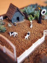 """多肉植物で農園を表現した""""植ラマ""""(写真提供 indolent note)"""