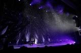 """全国ツアー『Aimer LIVE TOUR 17/18 """"hiver""""』ファイナルより"""