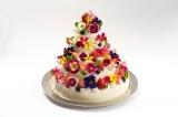 指示したはずのケーキと違う!揚江美子のしきたりにとらわれないウェディングケーキ(C)クリエイターズ・ファイル