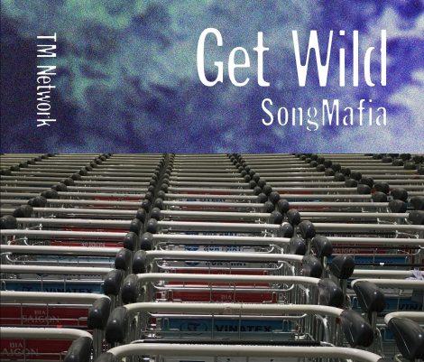 リビジテッド賞 TM NETWORK『GET WILD SONG MAFIA』