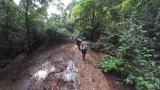 ガボン共和国のジャングルを歩く=3月29日放送、NHK総合『超体感!エクストリーム・ミッション』野生動物のフンを命がけで採取する腸内細菌学者・牛田一成教授の壮絶な研究現場(C)NHK