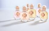 3つの個性的な香りを演出する「フォリフォリ」のフレグランス