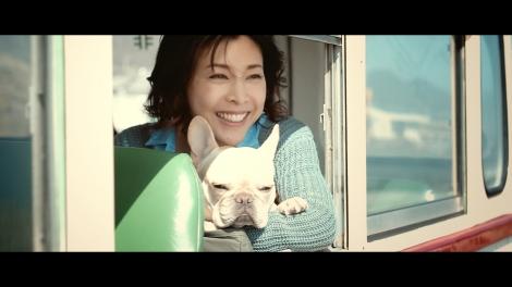 サムネイル 竹内結子と草なぎ剛の愛犬・くるみちゃんがミラーレスカメラ『EOS Kiss M』新TVCMに出演