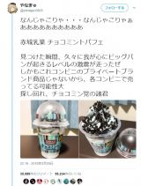 話題となった『パフェデザート チョコミント カップ300ml』の書き込み(やなぎゅさんTwitterより)
