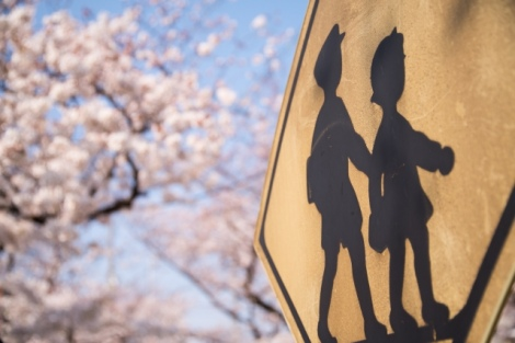 交通事故リスクが高まりやすいこの時期。改めてルールの大切さを認識しよう(画像はイメージ)