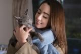 映画で共演した猫を引き取った沢尻エリカ (C)2018「猫は抱くもの」製作委員会