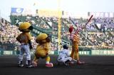 兵庫・阪神甲子園球場『阪神タイガースVS横浜ベイスターズ』