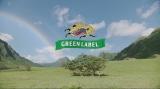 キリン 淡麗グリーンラベルの新CM「GREEN JUKEBOX 雨篇」より