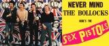 主題歌はセックス・ピストルズ「アナーキー・イン・ザ・U.K.」 (C)ユニバーサル ミュージック