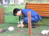 """ウサギと戯れる千葉雄大=映画『ピーターラビット』""""ウサギ""""まみれイベント(C)ORICON NewS inc."""