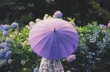 「wet」も雨を表す英単語 「梅雨」を説明する英語フレーズは